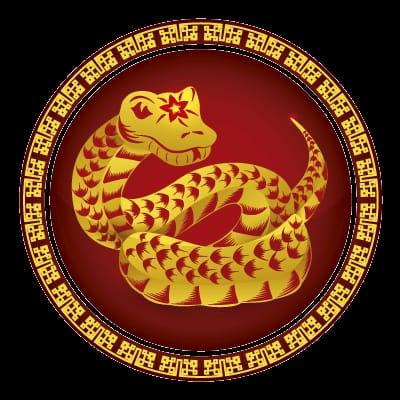 HORÓSCOPO CHINO 2020: SERPIENTE